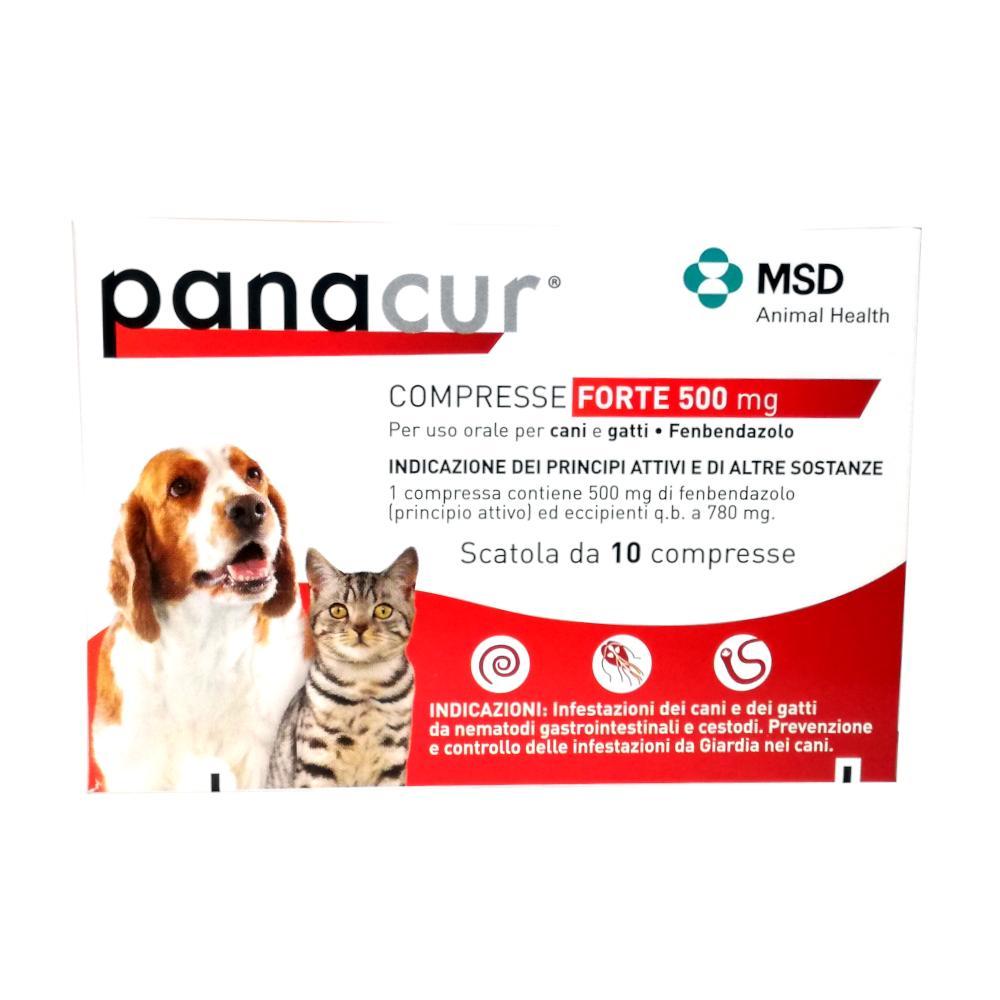 Giardia cane panacur. Pasziánsz kolostor,