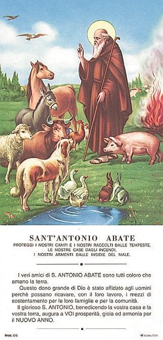 Cartoncino S. Antonio Abate cm. 13x27 (100 pz)