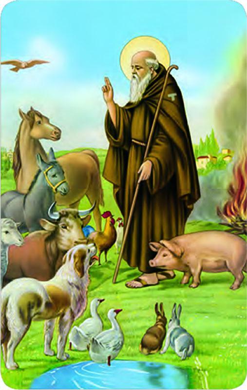 Pvc S. Antonio Abate con preghiera (100 pz)