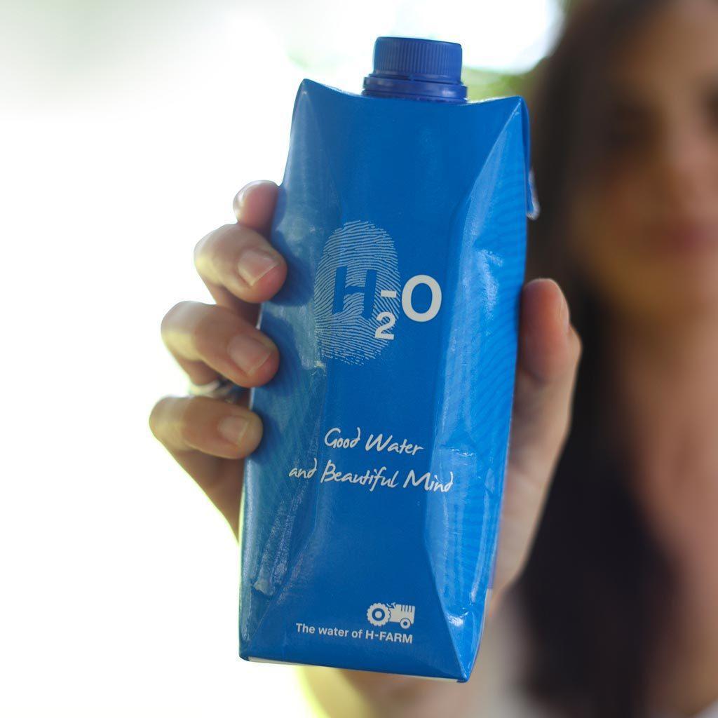 H2O H-FARM
