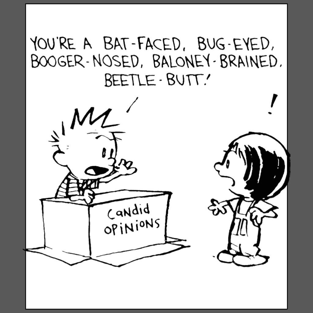 calvin and hobbes candid opinion  Susie Derkins
