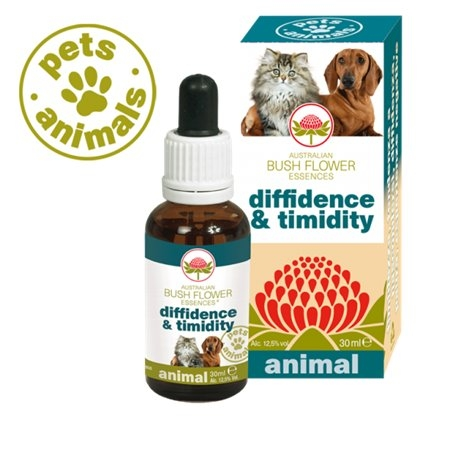 Diffidence & Timidity Pets