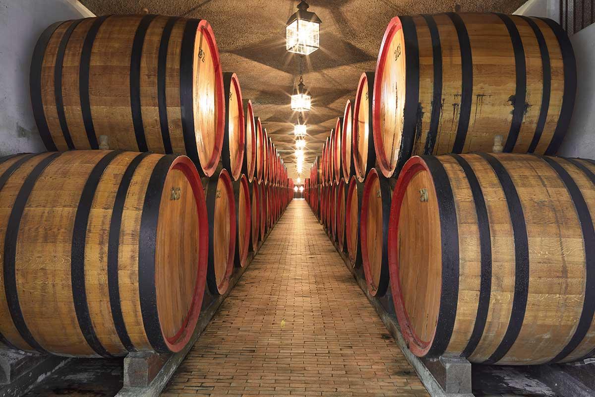Distilleria Nardini, le botti