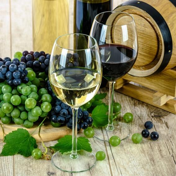 vino marche italia rosso piceno passerina grehetto verdicchio pecorino rosato prosecco