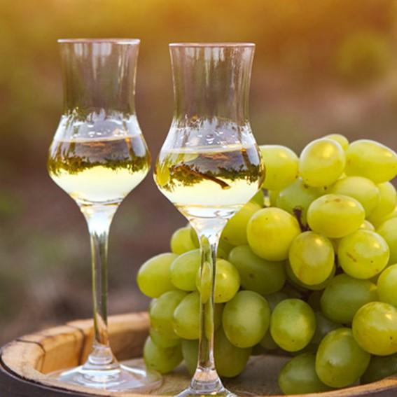 liquori grappa major barricata crema meloncino bananino vino di visciola marche