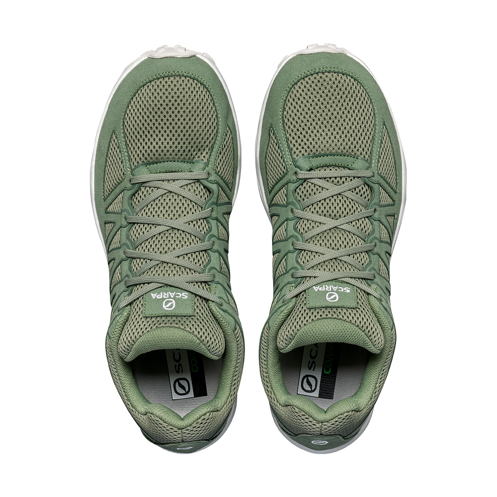 GAME    -   Light, essential, dinamic   -   Hedge Green