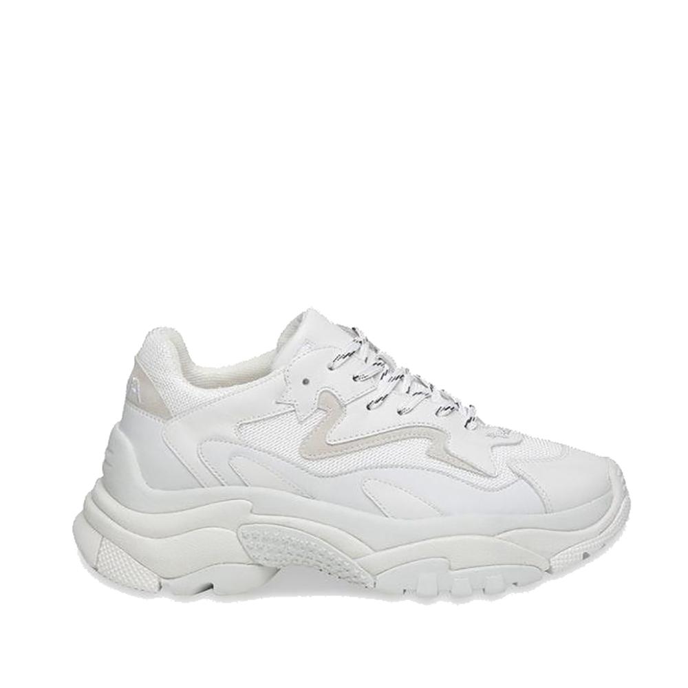 Sneakers Addict12  bianco - ASH