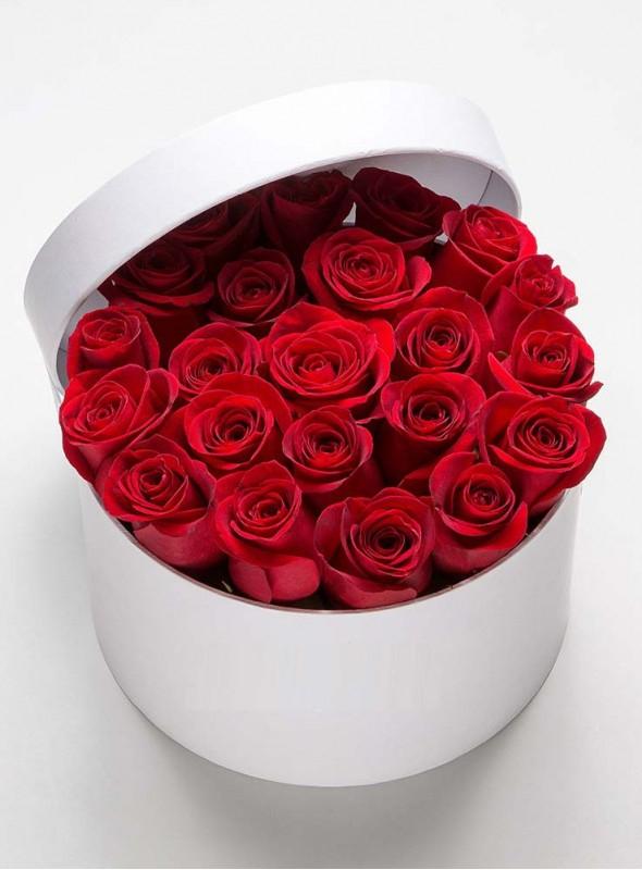 Scatola di 50 rose