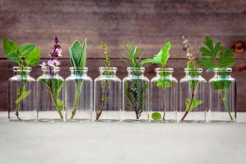 Sostanze botaniche