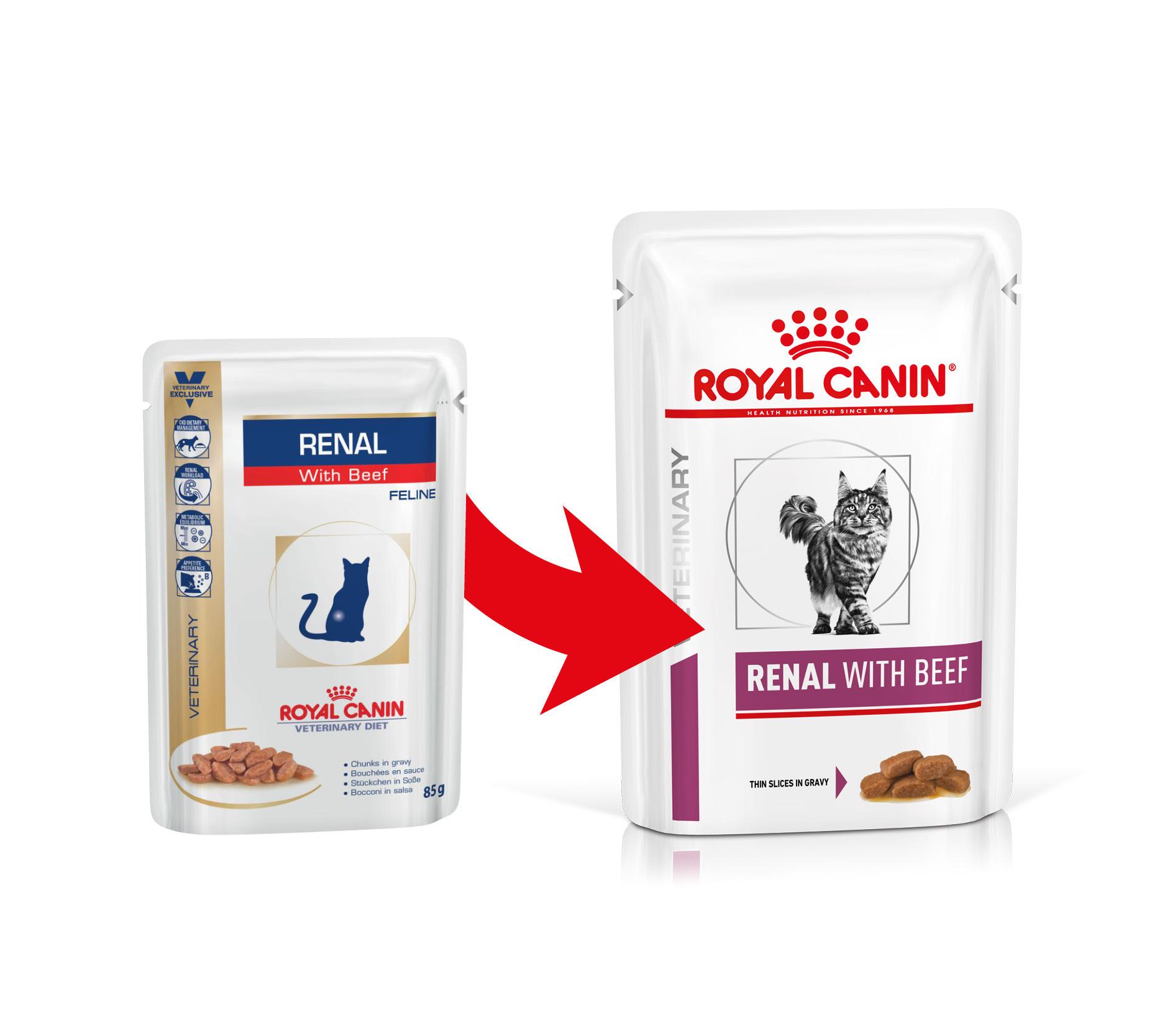 Royal Canin - Veterinary Diet Feline - Renal - BOX 12 bustine 85 gr