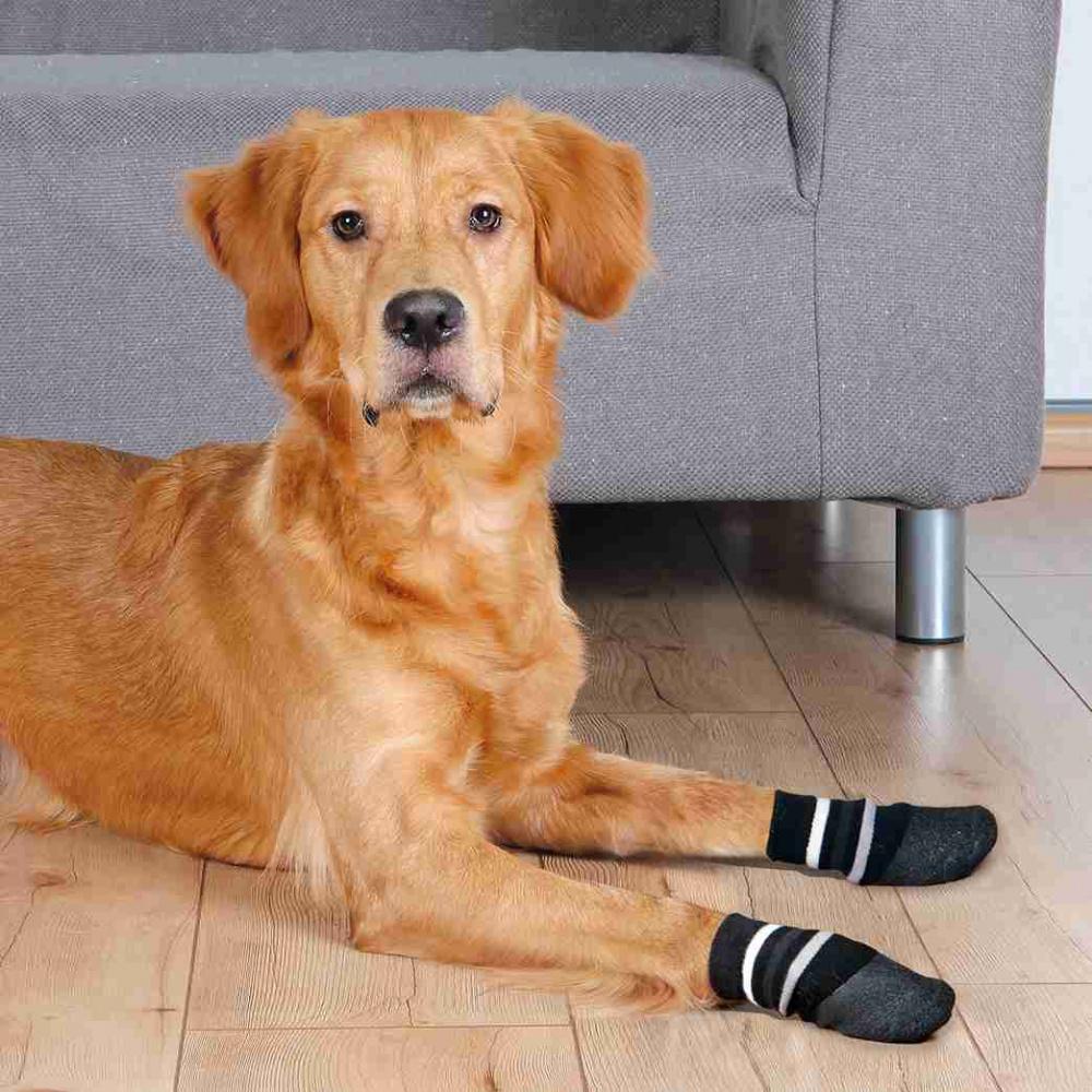 Trixie - Calze per Cani - XL