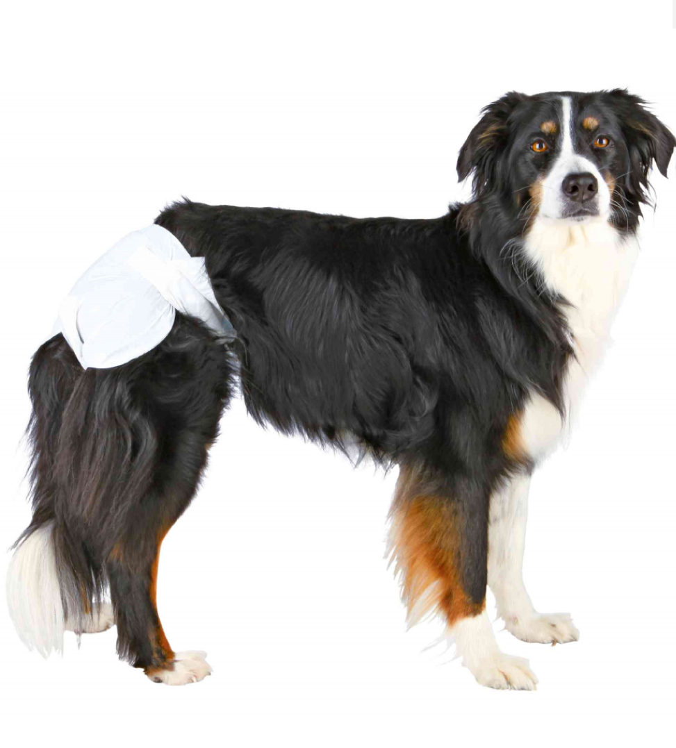 Trixie - Pannolini per Cani Femmina - L