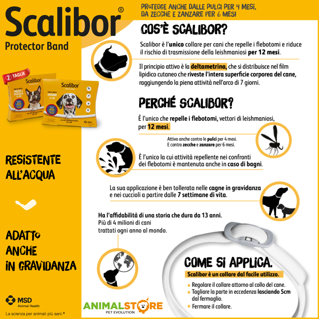MSD - Scalibor - Cane grande