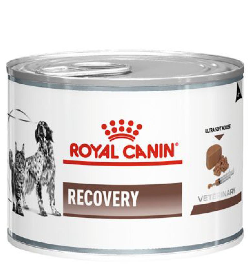 Royal Canin - Veterinary Diet Canine/Feline - Recovery - 195g x 6 lattine