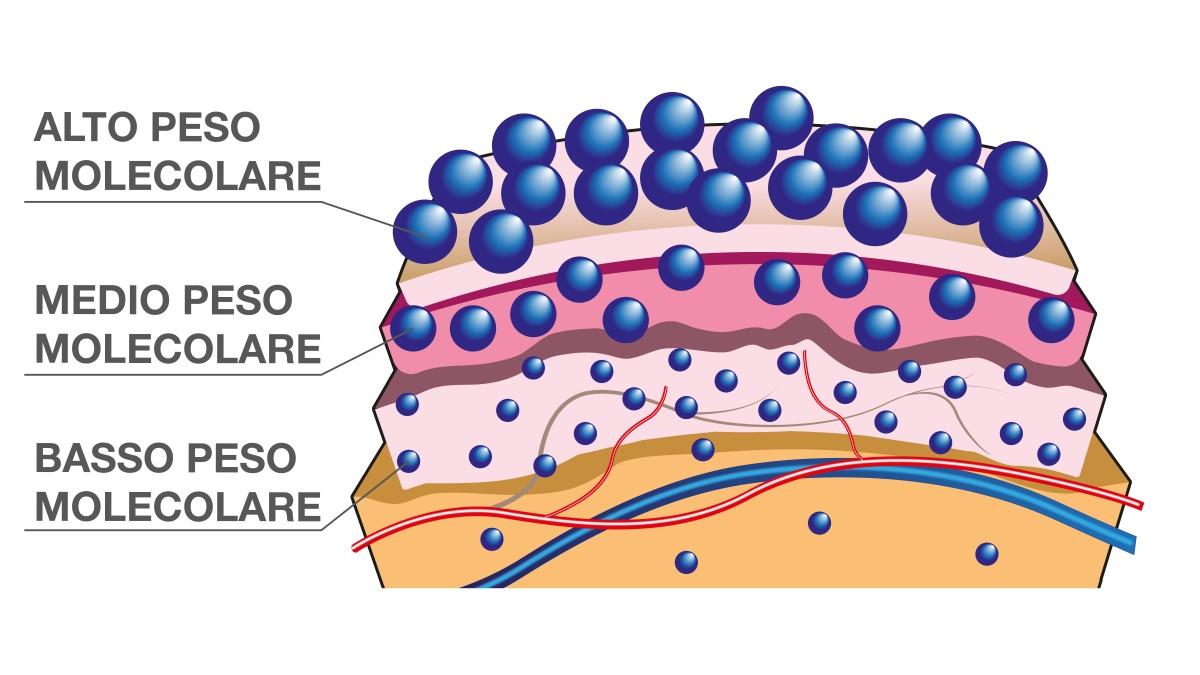 Acido ialuronico a triplo peso molecolare