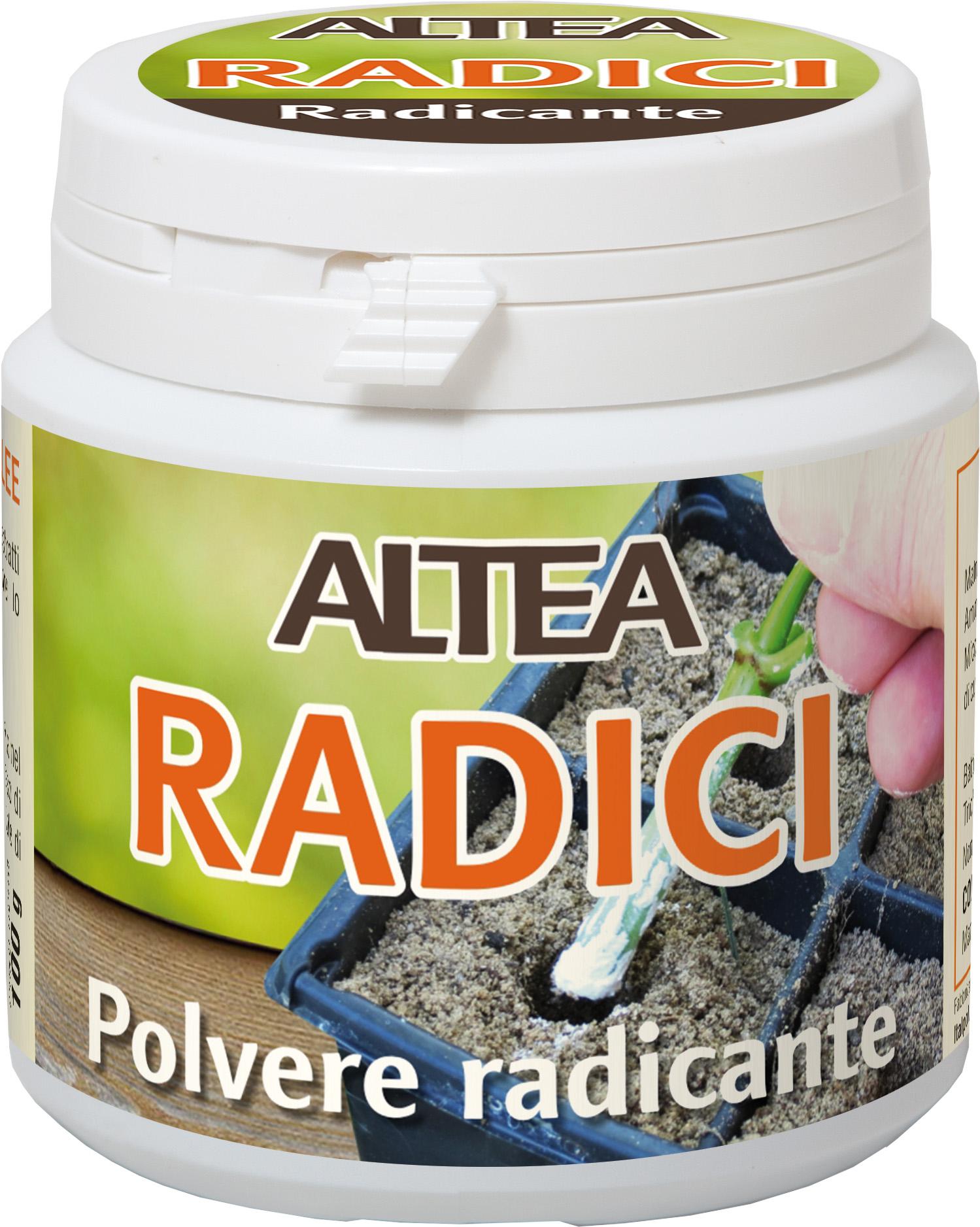 RADICI RADICANTE GR.100 ALTEA