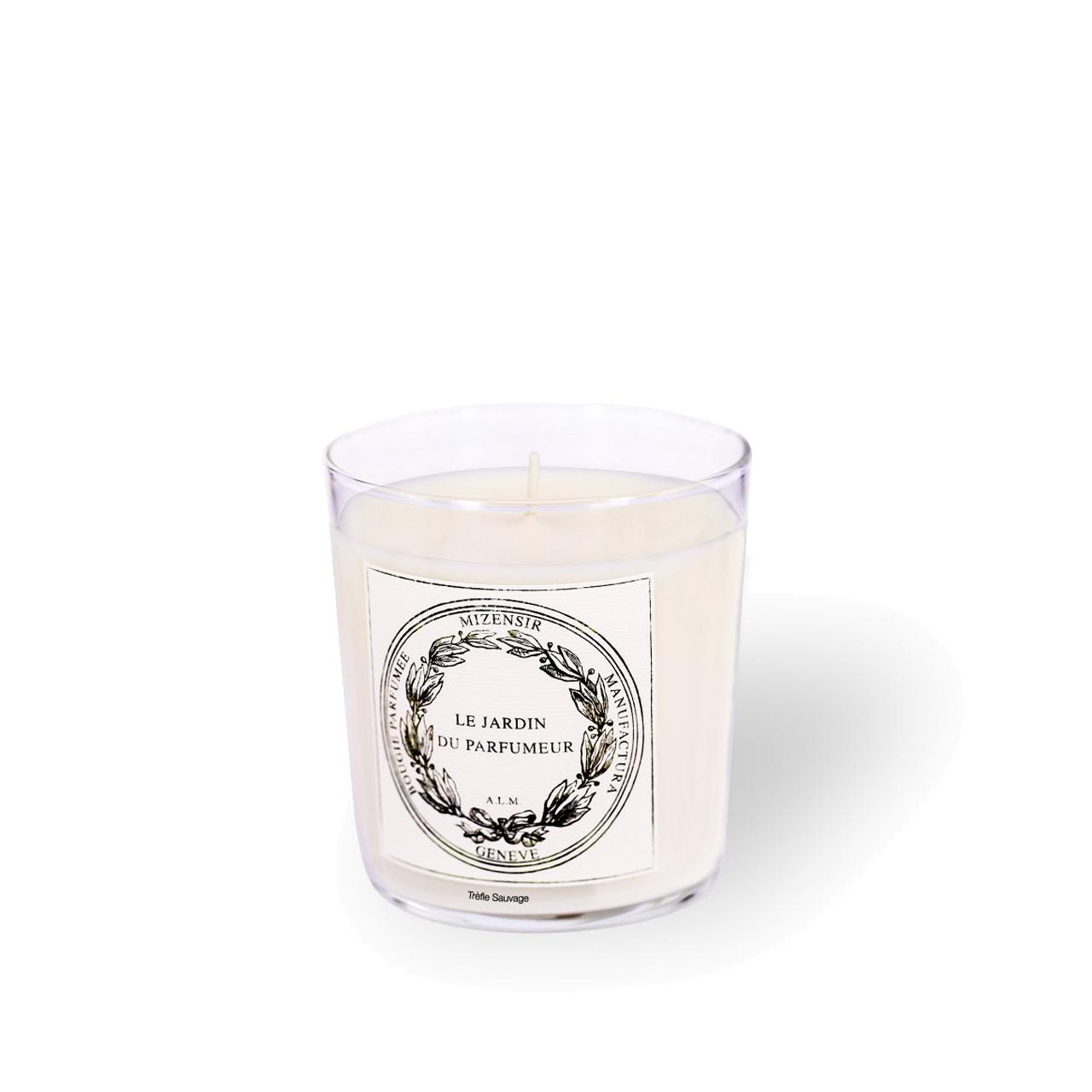 Trèfle Sauvage - Candle