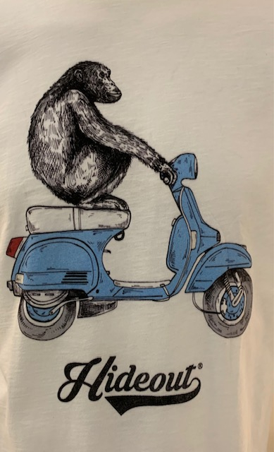 SHOPPING ON LINE HIDEOUT T-SHIRT BLUE MONKEY NEW COLLECTION SPRING/SUMMER 2021