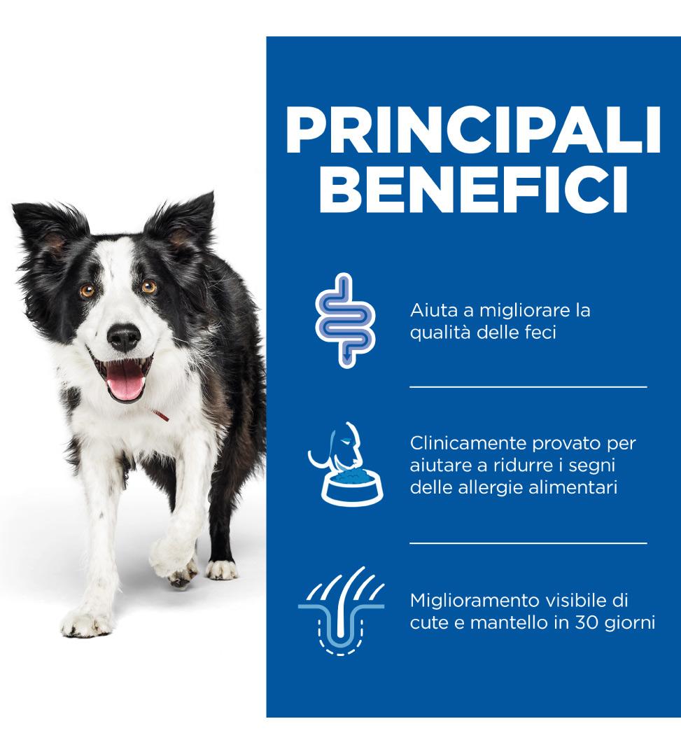 Hill's - Prescription Diet Canine - z/d - 10 kg