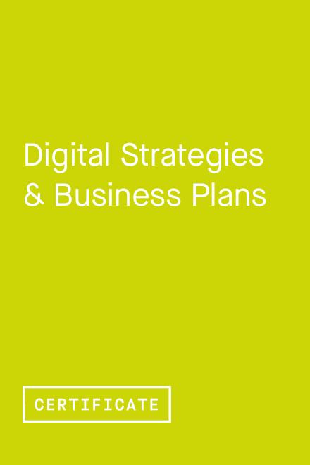Digital Strategies & Business Plans