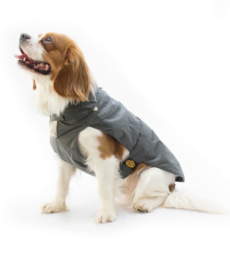 Fashion Dog - Cappotto Impermeabile - con Imbottitura Staccabile