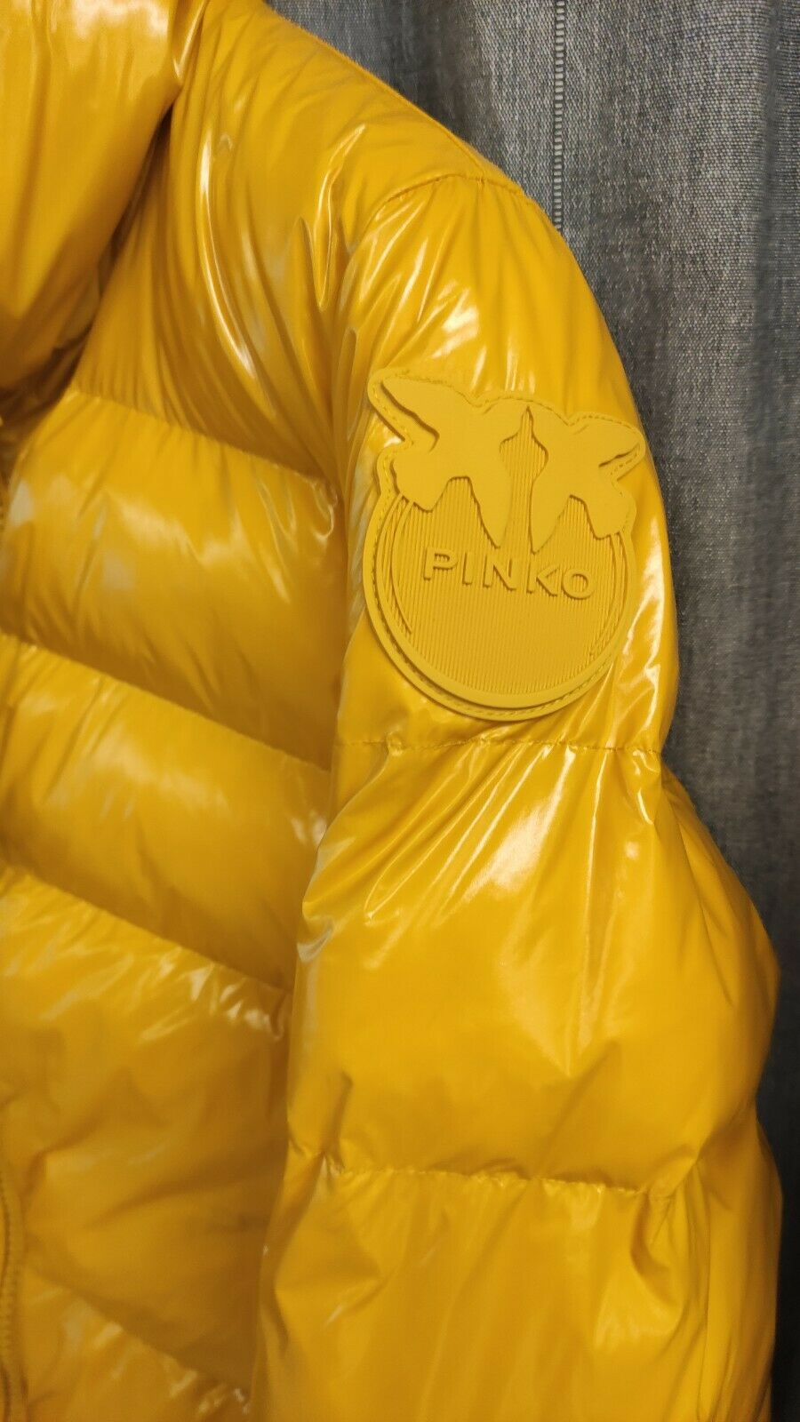 SHOPPING ON LINE PINKO PIUMINO IN CRYSTAL NYLON NEW COLLECTION WOMEN'S FALL/WINTER 2022-2