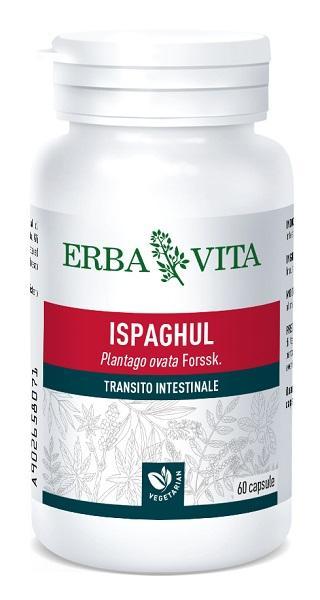 ISPAGHUL - INTEGRATORE TRANSITO INTESTINALE 500 MG 60 CAPSULE ERBAVITA