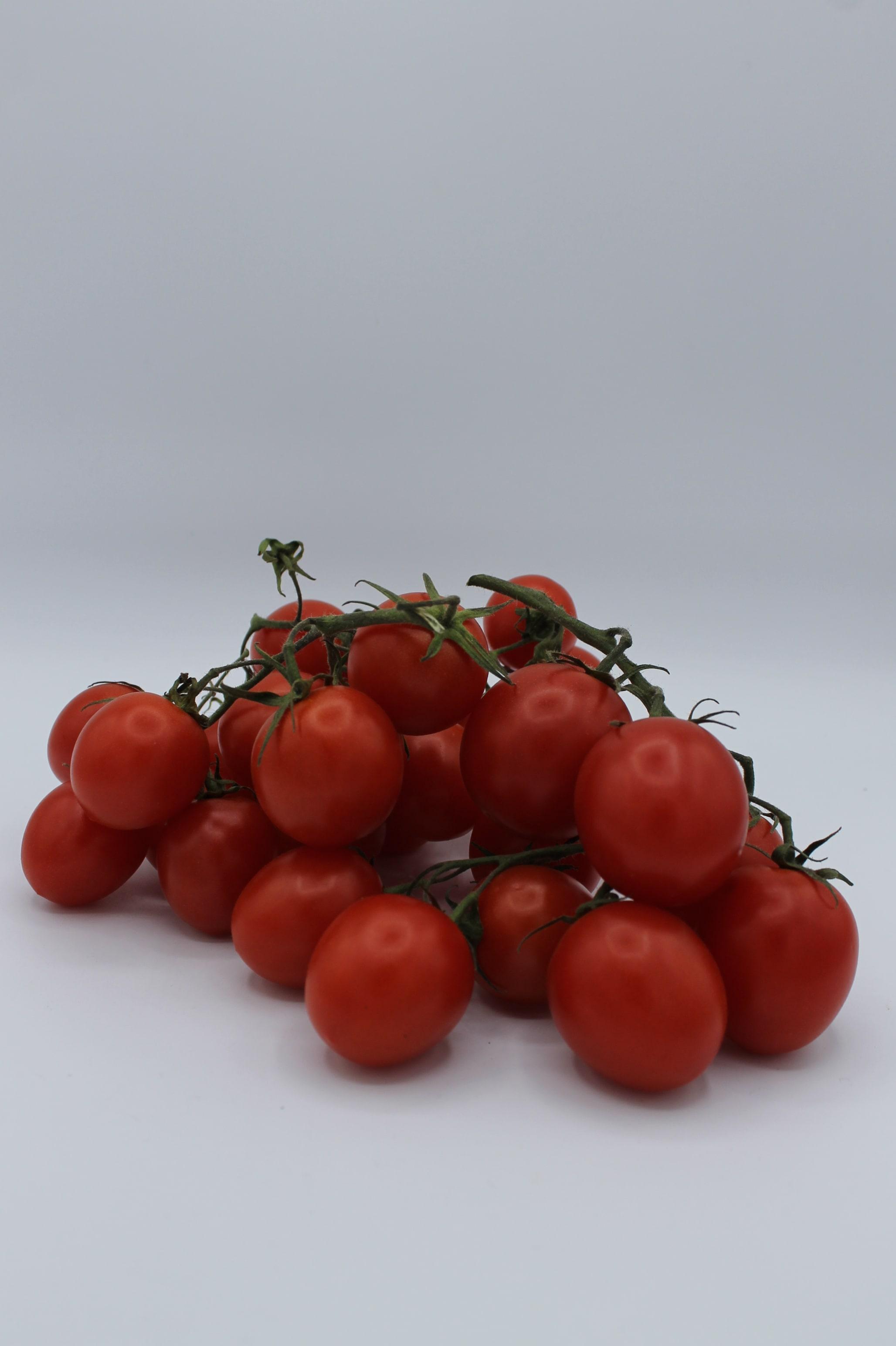 Pomodoro Piccadilly produzione Italia.