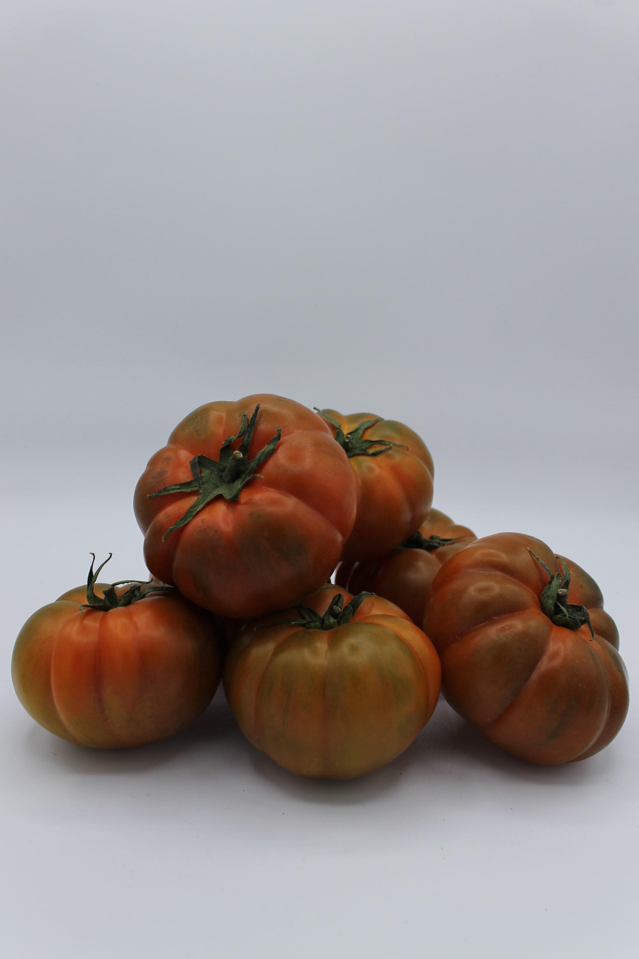 Pomodori Costoluto produzione Italia.