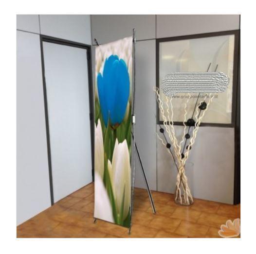 Espositore Fisso Monofacciali Flex da Interno 55x160 cm