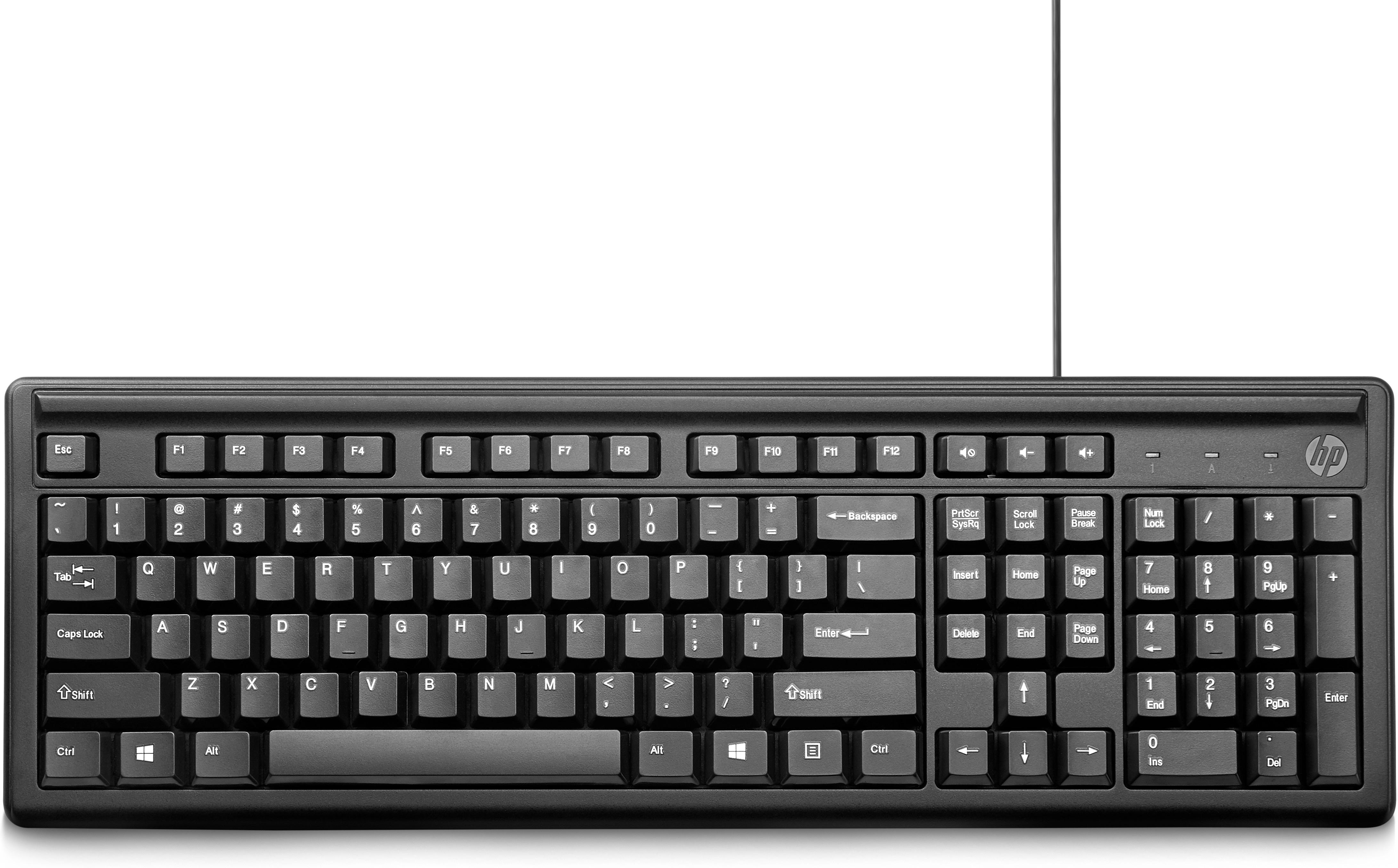 HP 100 tastiera USB Nero